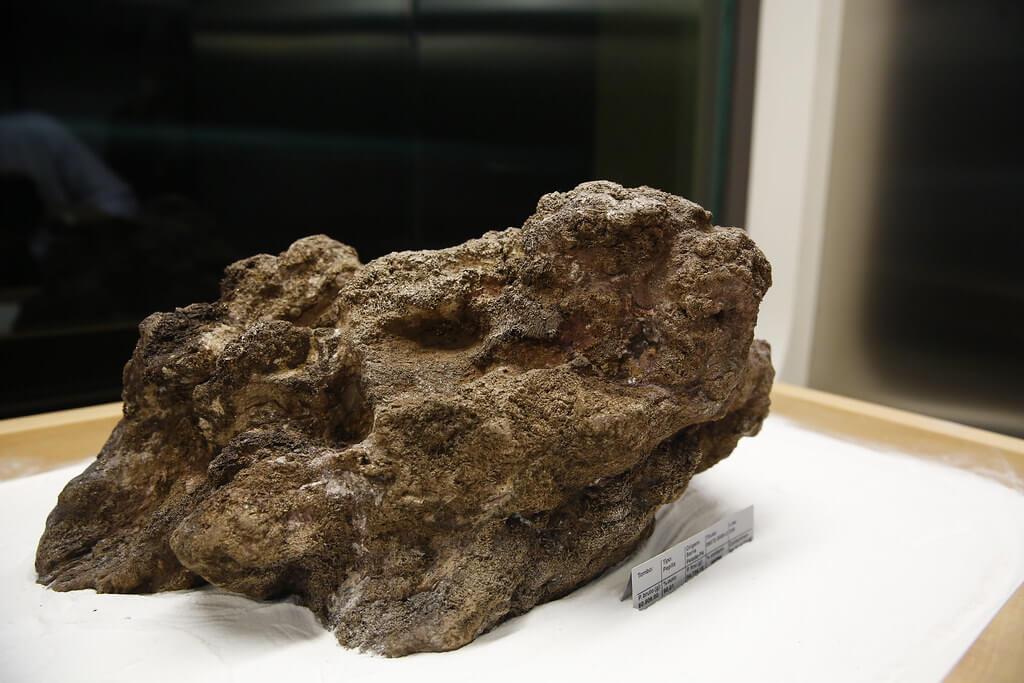 Pepita Canaã - największy złoty samorodek